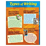 TREND enterprises, Inc. Types of Writing Learning Chart, 17'' x 22''