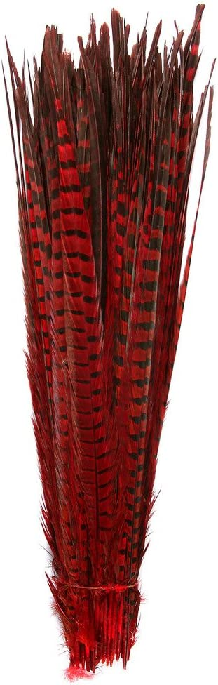 Pheasant Tails Feathers,Hgshow 10Pcs Plume Products Assorted Natural Feathers,About 20-22 inches,50-55cm Long