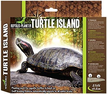 Reptiles Planet Isla para Tortugas acuáticas, tamaño Mediano