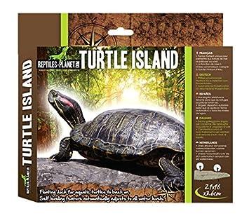 Reptiles Planet Isla para Tortugas acuáticas, tamaño Mediano: Amazon.es: Productos para mascotas