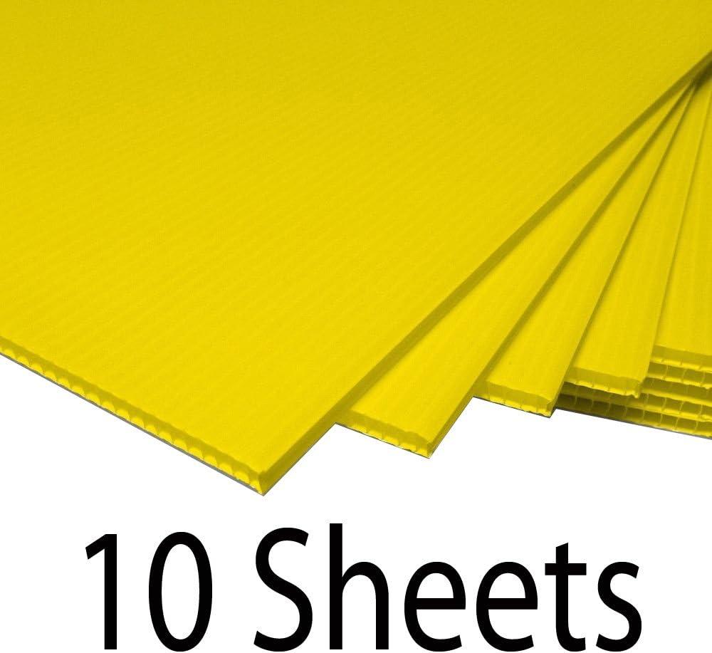 Amazon.com: Greenstar - Cartel de cartón corrugado de ...