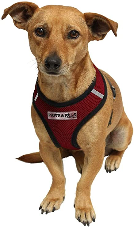 GREEN S PET CONTROL HARNESS DOG CAT USA SOFT MESH WALK SAFETY STRAP COLLAR VEST