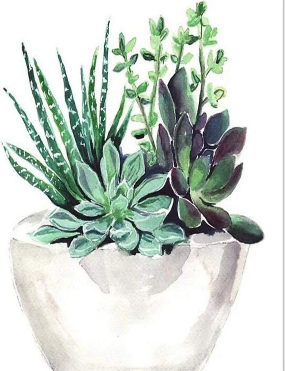 Painted Succulent Pot 5D Diamond Painting kit Crystal Full Round Drill DIY Handmade Mosaic Diamonds Embroidery Cross Stitch Picture Home Decoration Artwork~
