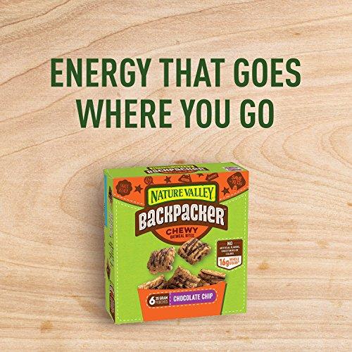Nature Valley Backpacker Chocolate Chip Chewy Oatmeal Bites 7.44 oz. P... - 611dZIruWQL