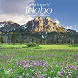Idaho Wild & Scenic 2020 7 x 7 Inch Monthly Mini Wall Calendar, USA United States of America Rocky Mountain State Nature