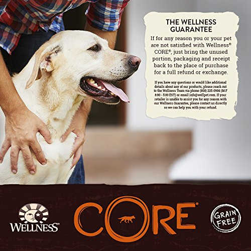 Wellness Core Natural Dry Grain Free Small Breed Dog Food