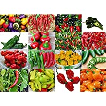 PLEASE READ! THIS IS A MIX!!! 30+ ORGANICALLY GROWN Hot Pepper Mix Seeds, 16 Varieties Heirloom NON-GMO Habanero, Tabasco, Jalapeno, Yellow and Red Scotch Bonnet, Ship from USA