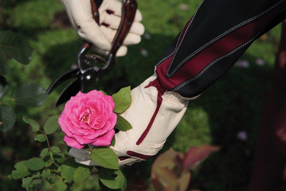 Bionic Women's Rose Gloves, Medium
