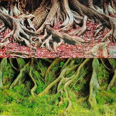 19 Inch Height Double Sided Aquarium Background Tree Roots Decorations Karen Low NEW!