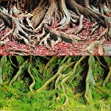 Karen Low NEW!! 19 Inch Height Double Sided Aquarium Background Tree Roots Decorations (30''(L) x 19''(H))