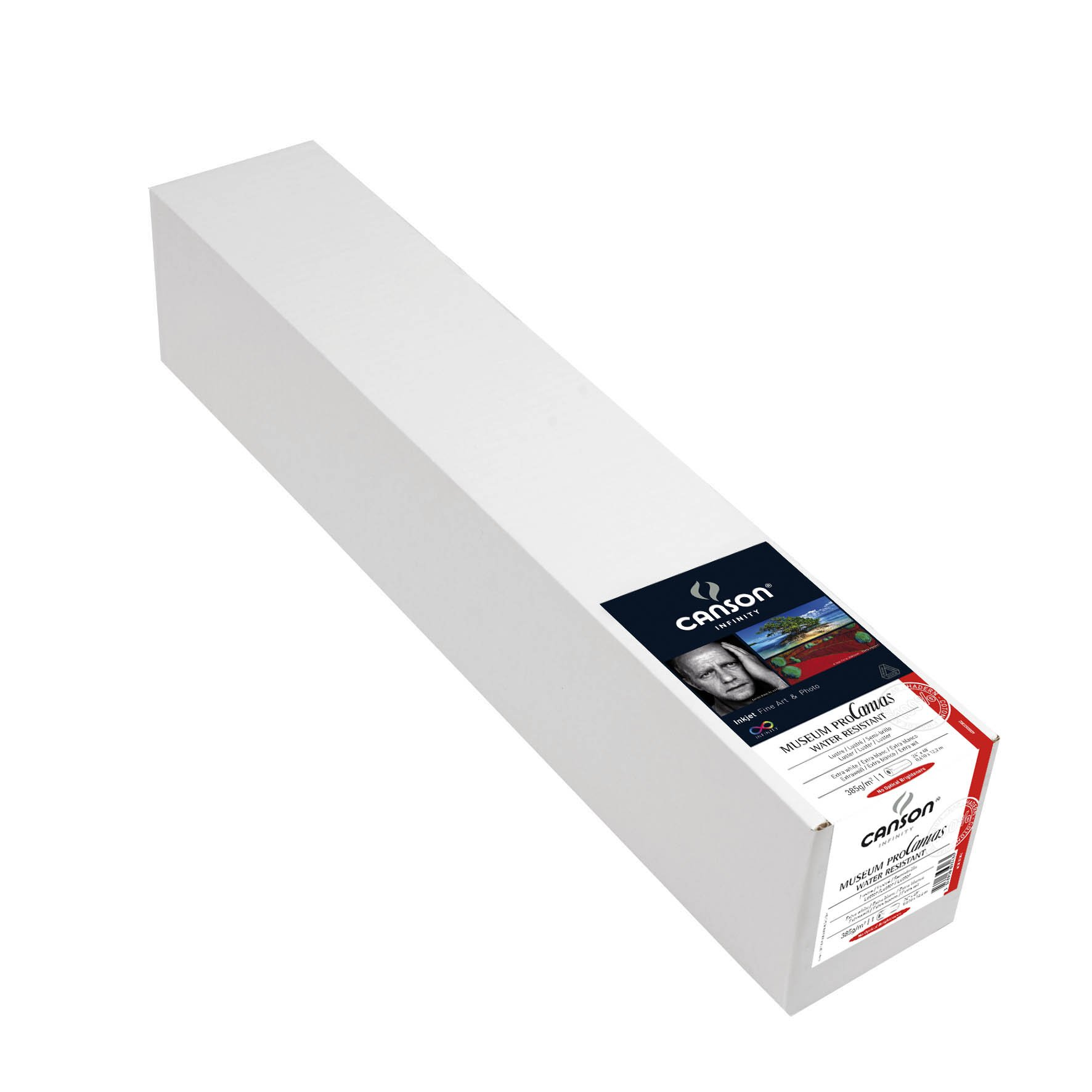 Canson Infinity Museum Pro Canvas Lustre, 24 Inch x 40 Foot Roll by Canson