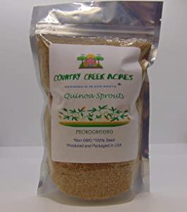 Quinoa Sprouting Seed, Non GMO - 16 oz - Country Creek Acres Brand - Quinoa for Sprouts, Garden Planting, Cooking, Soup, Emergency Food Storage, Vegetable Gardening, Juicing, Cover Crop