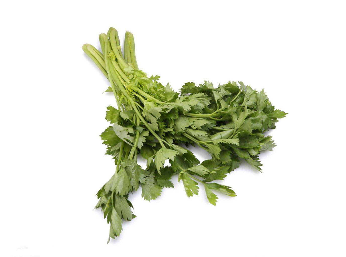 300 Chinese Celery Celery drugs Green Organic Vegetable Seeds ~Chris's garden