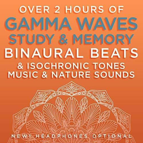 Positive Mood Elevation - 41.2 Hz Gamma Frequency Binaural Beats