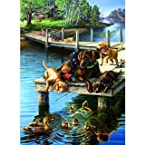 Summer School a 500-Piece Jigsaw Puzzle by Sunsout Inc.