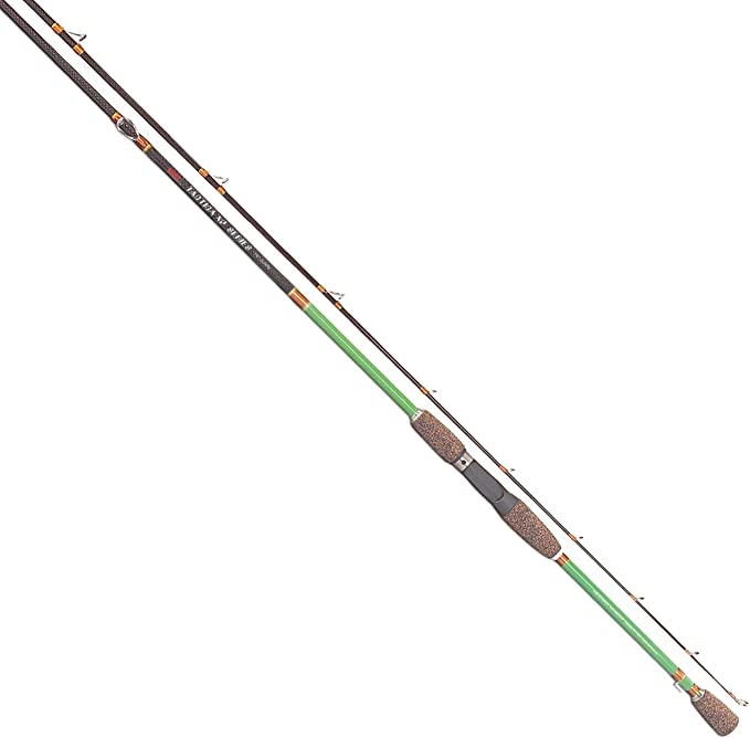 best budget walleye rod