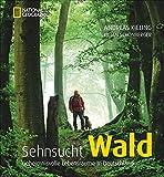 Bildband Sehnsucht Wald: Dieses National Geographic Buch betrachtet geheimnisvolle Lebensräume in Deutschland, den Mythos von Bäumen und Tieren im Forst: Wolf, Adler und Wildschwein