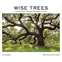 Wise Trees 2019 Wall Calendar: Remarkable Living Monuments from Around the World