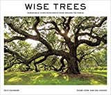#9: Wise Trees 2019 Wall Calendar: Remarkable Living Monuments from Around the World