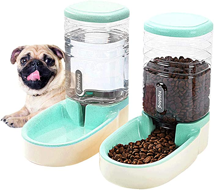 The Best Dry Food Feeder Green