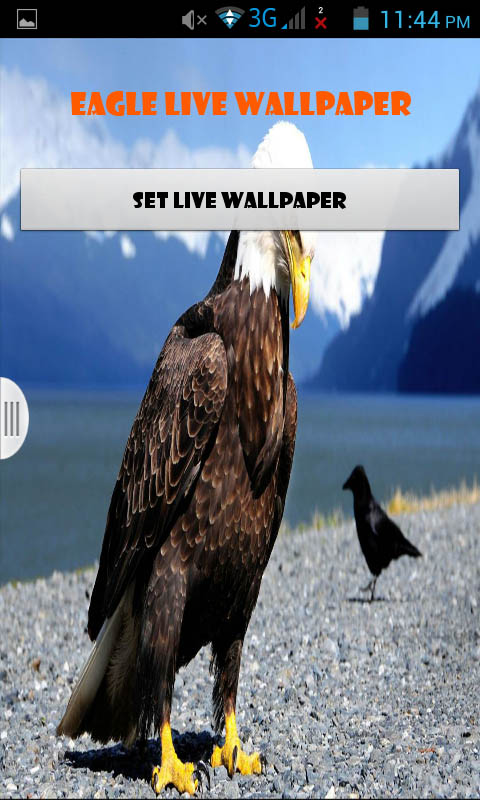 Amazon Eagle Live Wallpaper Best Appstore For Android