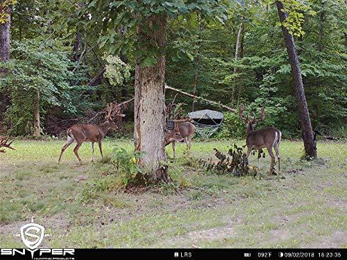 4GLTE Cellular Trail Camera Snyper - Commander 4GLTE Trail Camera 12MP/1080P Wireless Trail Camera with 2