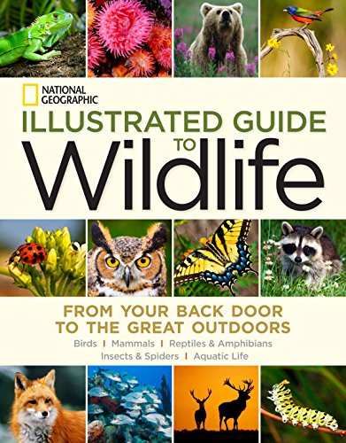From one of the most trusted names in field guides comes a new and lavishly illustrated guide to identifying North America's most common birds, mammals, insects, reptiles, and amphibians, plus fish and other aquatic creatures. Broad in scope and clea...