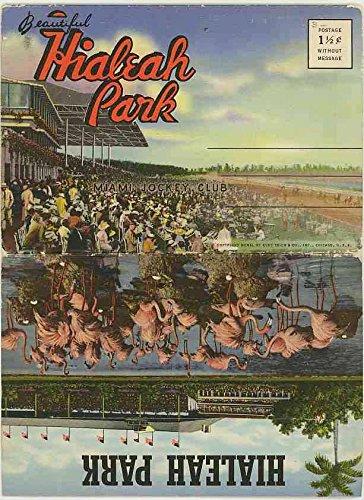 - Beautiful Hialeah Park - Miami Florida Jockey Club - 1940 Curt Teich Souvenir Postcard Folder #D-6401