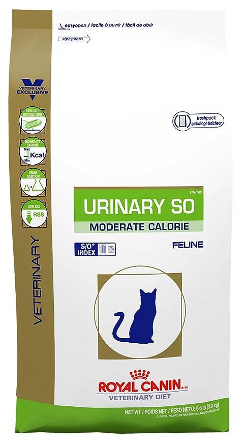 Amazon Com Royal Canin Feline Urinary So Moderate Calorie Dry 3 3