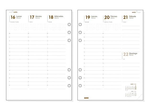 Amazon.com : Finocam - Annual Refill 2020 Week Vertical View ...
