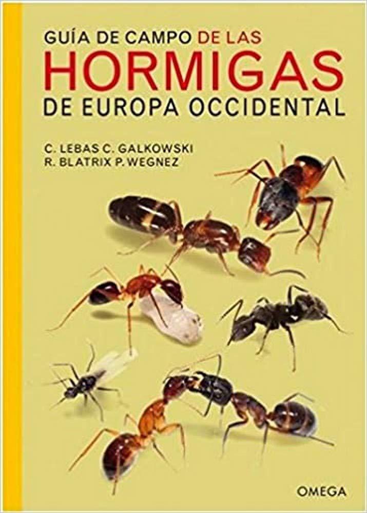 Guía de campo de las hormigas de Europa occidental GUIAS DEL NATURALISTA: Amazon.es: Lebas, Claude, Galkowski, Christophe, Font Barris, Jordi: Libros