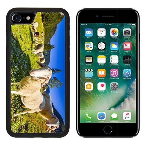 (MSD Premium Apple iPhone 7 Aluminum Backplate Bumper Snap Case iPhone7 IMAGE ID 31466276 Alpine pastures in the Slovenian Alps Triglav National Park)