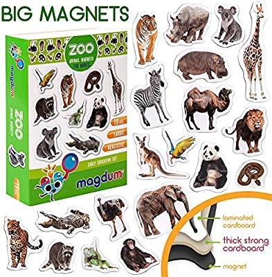 MAGDUM Imanes Animales Zoo Foto Real de Pizarra Infantil para ...