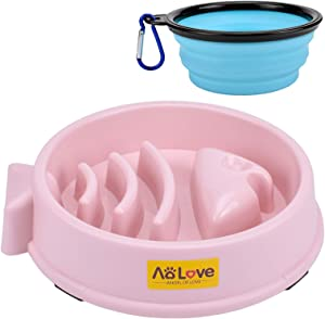 AOLOVE Slow Feeder Bowl Healthy Food Fun Anti-Choke Pet Bowls for Dog