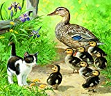 Ducks and Friend 25 pc Jigsaw Puzzle by SunsOut