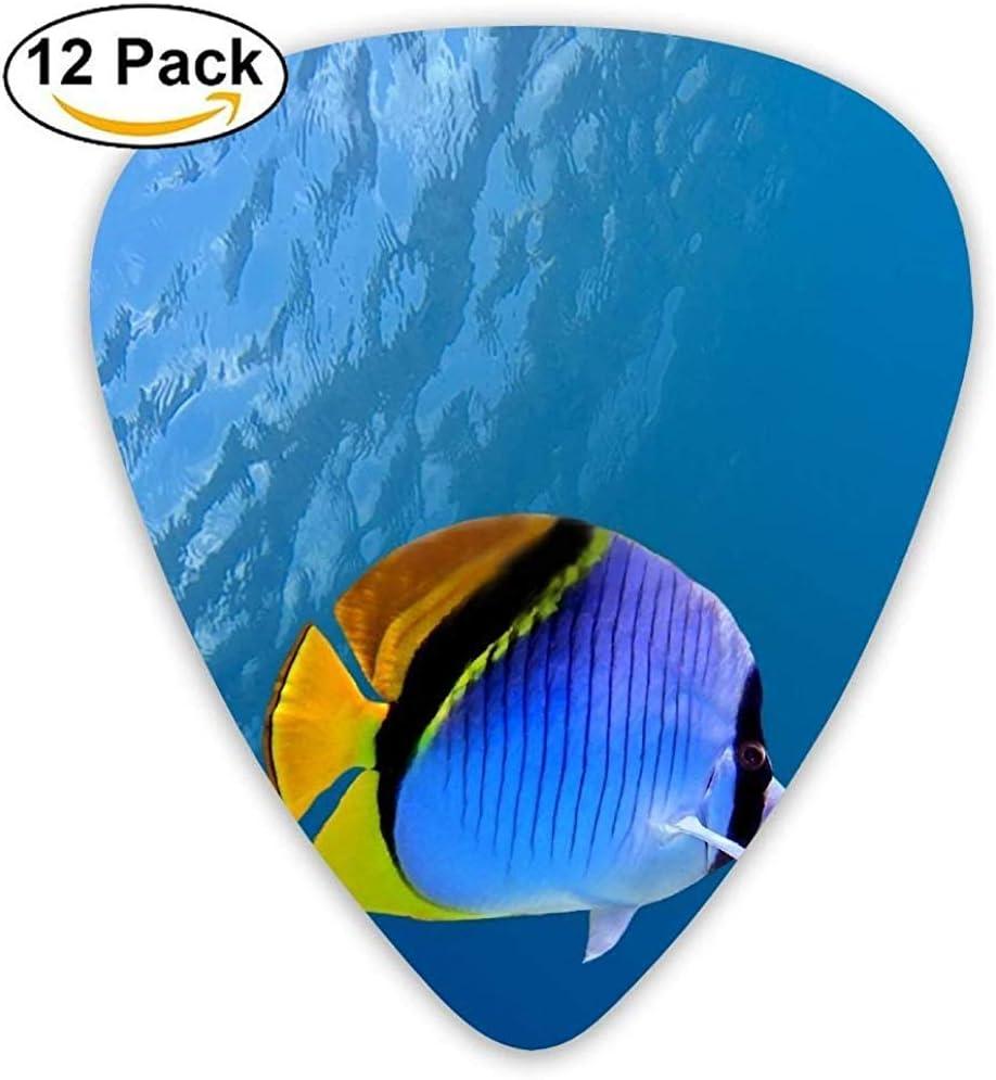 Guitarra de coral y peces de natación subacuática Pick 12pack