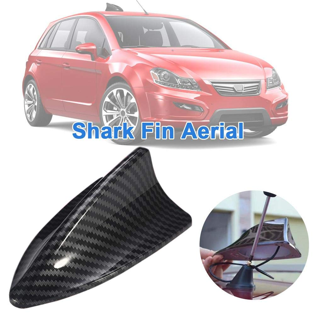 Eilane Shark Fin Car Antenna Carbon Universal Fiber Roof for FM//AM RV Radio fine masterly