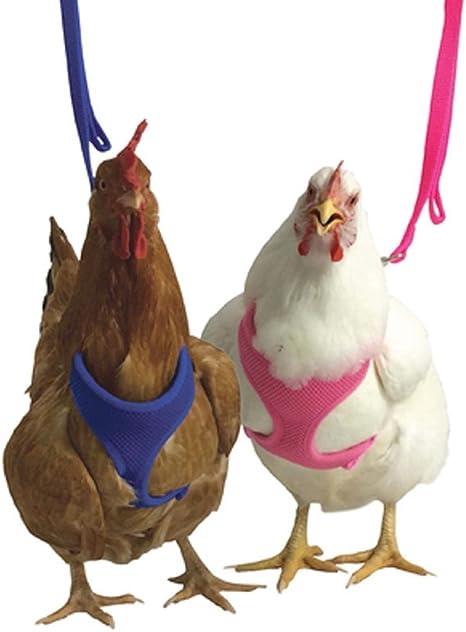 Rooster /& Hen Kit Karen Marie Klip