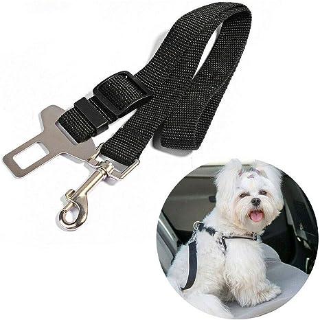 Ukmaster Hundesicherheitsgurt Auto Hunde Sicherheitsgurt Einstellbar Hundegurt Für Alle Hunderassen Autotypen Küche Haushalt