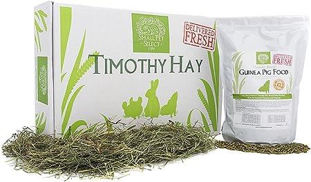 Amazon Com Small Pet Select Combo Pack Timothy Hay 10 Lb And Guinea Pig Food 5 Lb Pet Supplies