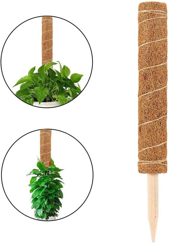 Kokosfaser Pflanzstab Kokos F/ür Pflanzen Stange Aus Kokosfaser Totem Zur Verl/ängerung Von Pflanzen St/äbchen Totem Stange F/ür Pflanzen Klettern coil.c Totem Stange
