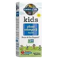 Garden of Life Kids Plant Omega-3 Liquid, Strawberry - Vegan Brain & Eye Support for Kids, Plant-Based Children's Omega 3 Ala, Dha & Epa Supplement for Children, Sugar Free & Non-GMO - 2 Fl Oz Liquid