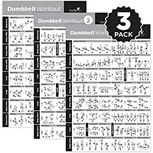 NewMe Fitness Dumbbell Exercise Posters Laminated 3 Pack Includes VOL 1,2,3 Workout Strength Training Chart-Build Muscle, Tone & Tighten-Home Gym Weight Lifting Routine-Body Building Guide-20 x30