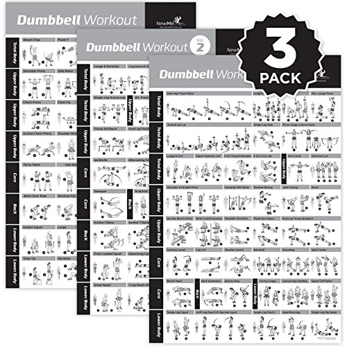 (NewMe Fitness Dumbbell Exercise Posters Laminated 3 Pack Includes VOL 1,2,3 Workout Strength Training Chart-Build Muscle, Tone & Tighten-Home Gym Weight Lifting Routine-Body Building Guide-20 x30)