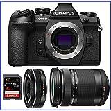 Olympus OM-D E-M1 Mark II Mirrorless Micro Four Thirds Digital Camera (V207060BU000) + Olympus M.Zuiko Digital ED 14-42mm f/3.5-5.6 EZ Lens & ED 40-150mm f/4.0-5.6 R Lens
