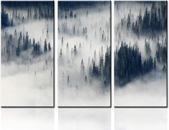 Amazon Com Tumovo 3 Piece Foggy Forest Mountain Canvas Wall Art Black Pine Tree Forest Among The Fog Mistery Concept Modern Home Decor Stretched And Framed Ready To Hang 40 X60 Posters