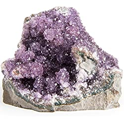"""Digging Dolls Specimens: Exceptional Amethyst Geodes from Uruguay - 1.5 lb to 2 lbs - """"B"""" Grade - Amethyst Stone Rock Specimen for Arts, Crafts, Home Décor, Reiki and Crystal Healing"""