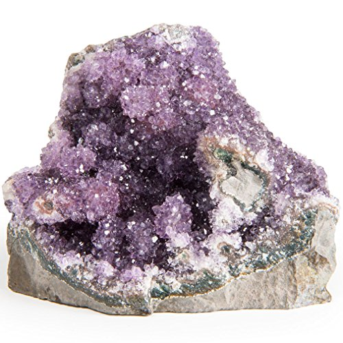 Digging Dolls Specimens: Exceptional Amethyst Geodes from Uruguay - 1.5 lb to 2 lbs -