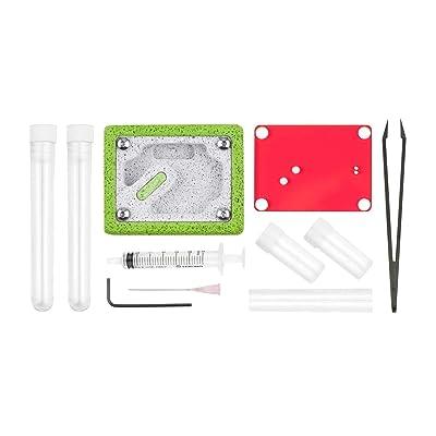 Aus Ants Ant Farm Ytong Starter Kit: Toys & Games