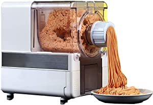 LYzpf Fully Automatic Pasta Machine Fresh Homemade Dough Mixing Home Small Vertical Electric Pressing Multifunction Noodle Maker with 8 Moulds